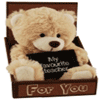 Teacher - My Favourite Teacher - Bear in Box
